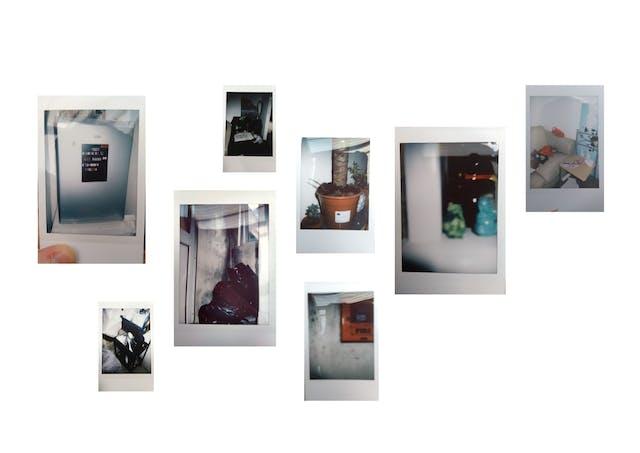 Libby ward polaroids commphoto