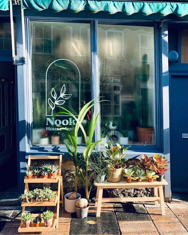 Exterior shot of Nook Houseplants, with steamed up windows, plants on display and logo proud in the window