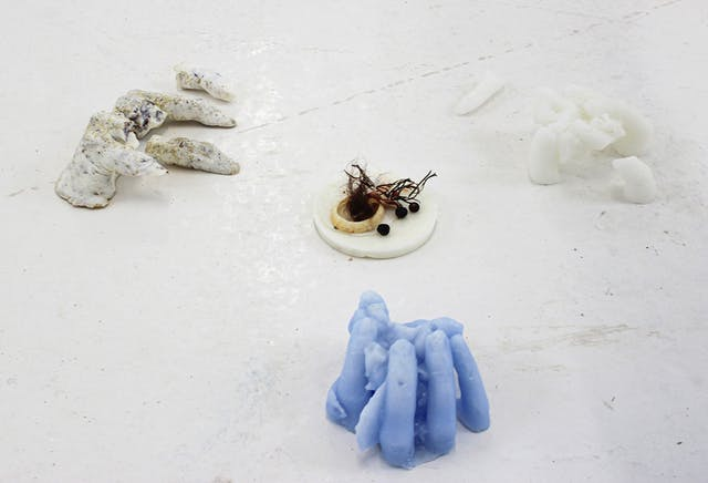 Sculptural installation of casts of hands surrounding a small circular still life set up featuring a shell work by Ashanti for Testspace at Karst June 2021 Photos by Eloise Dodsworth