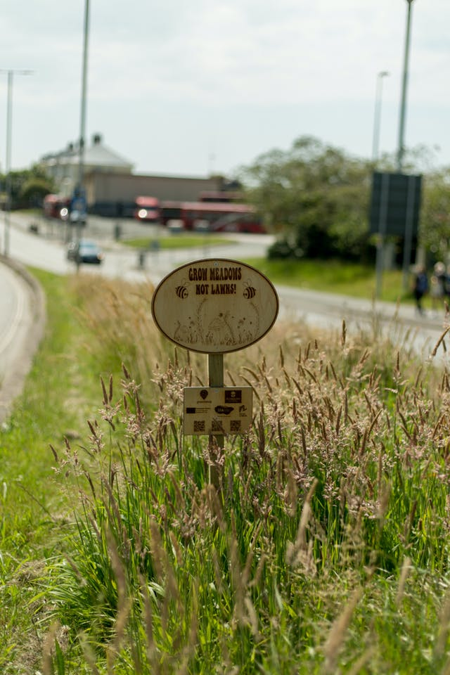 Wildflower meadow sign designed by Eve Newman Image Credit Ray Goodwin