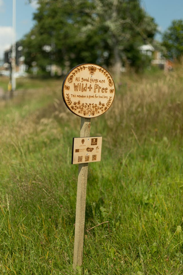 Wildflower meadow sign designed by Genevieve Stewart Image Credit Ray Goodwin